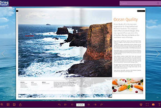 Flash Brochure Software Create Stunning Flash Brochure With Video