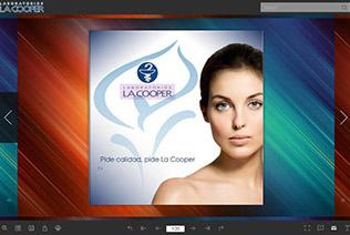 Flip PDF Pro DemoBook