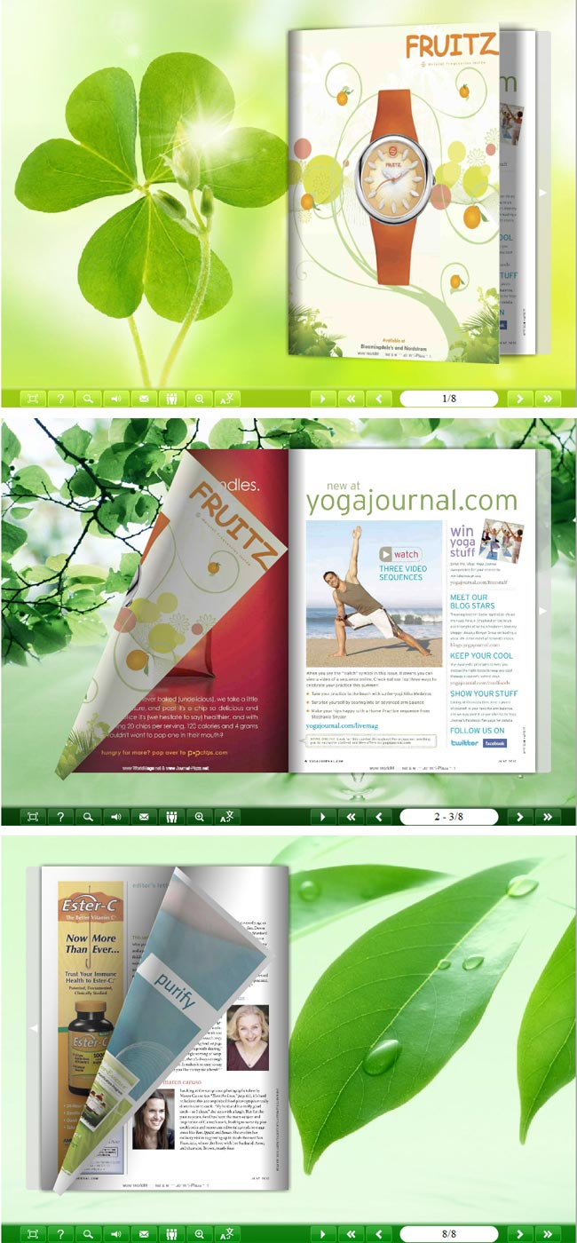 Flipbook_Themes_Package_Classical_Fresh full screenshot