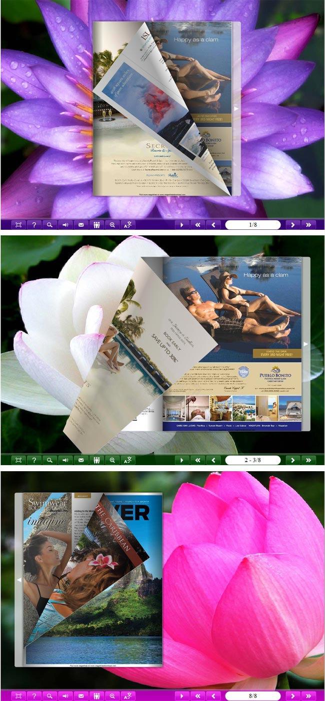 Windows 7 Flipbook_Themes_Package_Classical_Lotus 1.0 full