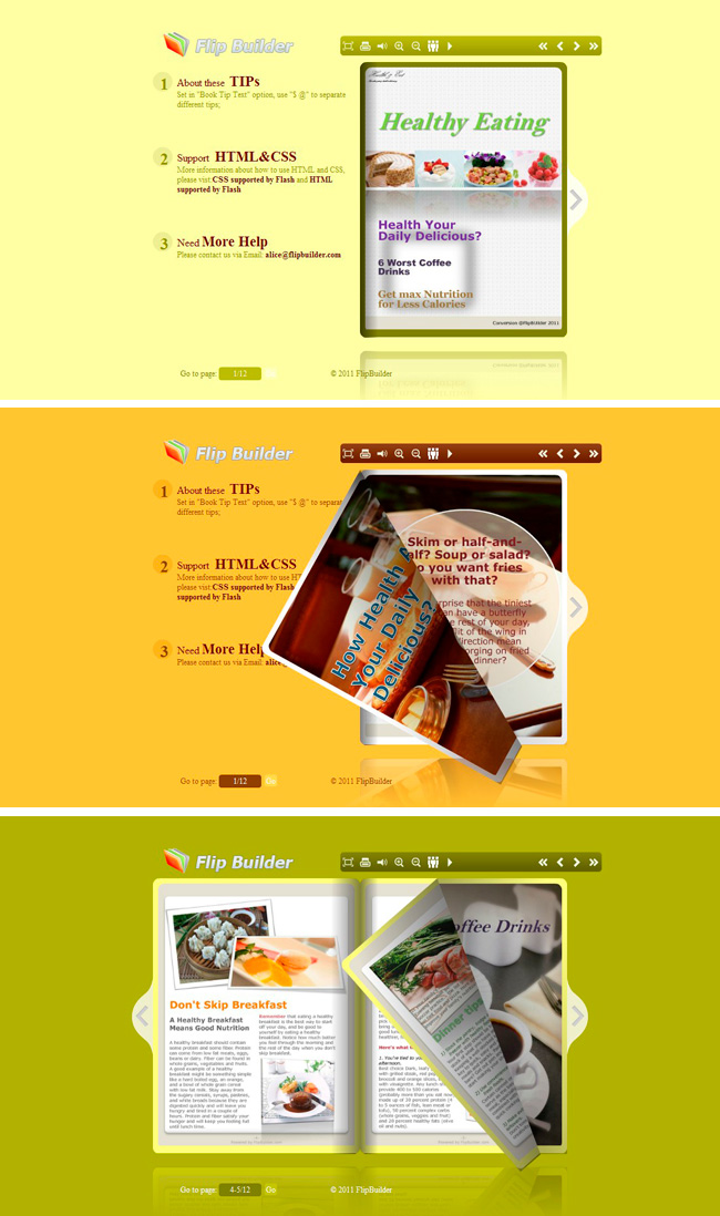 Flip_Themes_Package_Conciseness_Yellow 1.0 full