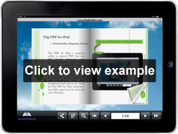 demobook created by Flip PDF for iPad