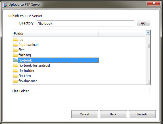 publish to ftp server