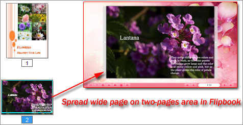 spread wide page in flipbook